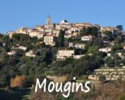 demenagement mougins